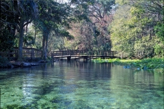 Wekiwa Springs Bridge, Florida