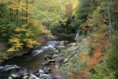 Autumn on the Little River, Smokies, Tennessee